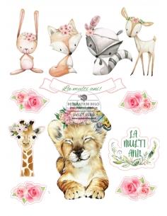 Animalute si flori, poze...