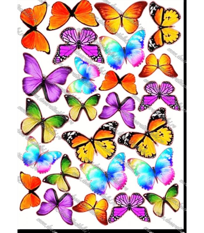 Imagine comestibila fluturi colorati