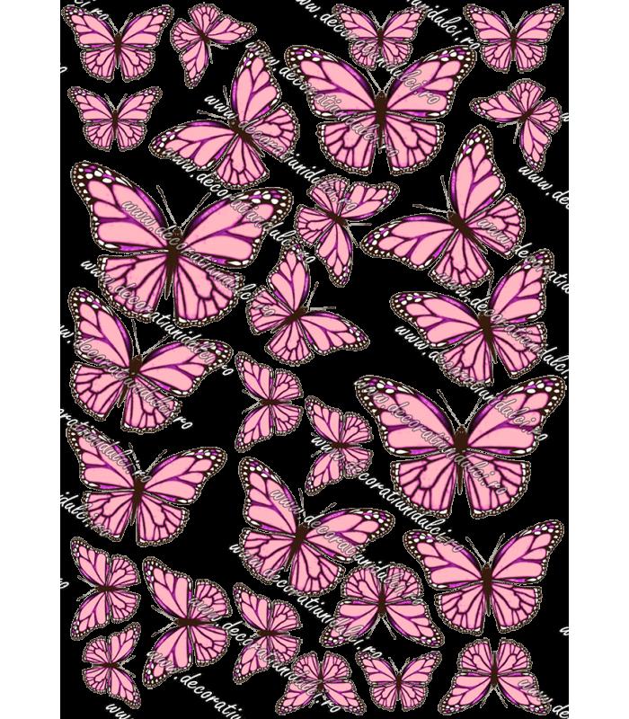 Imagine comestibila fluturi - 5