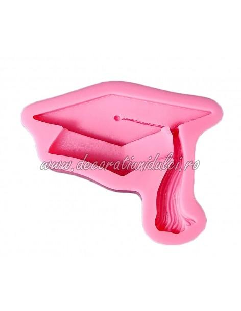 Mulaj capa absolventi