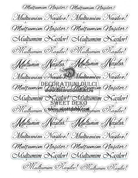 Etichete Multumim Nasilor