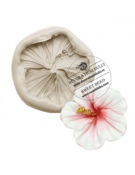 Mulaj floare hibiscus