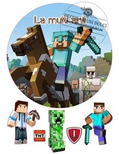 Poza tort Minecraft