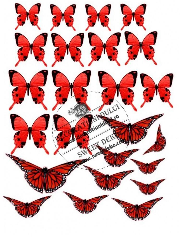 Imagine comestibila fluturi rosii