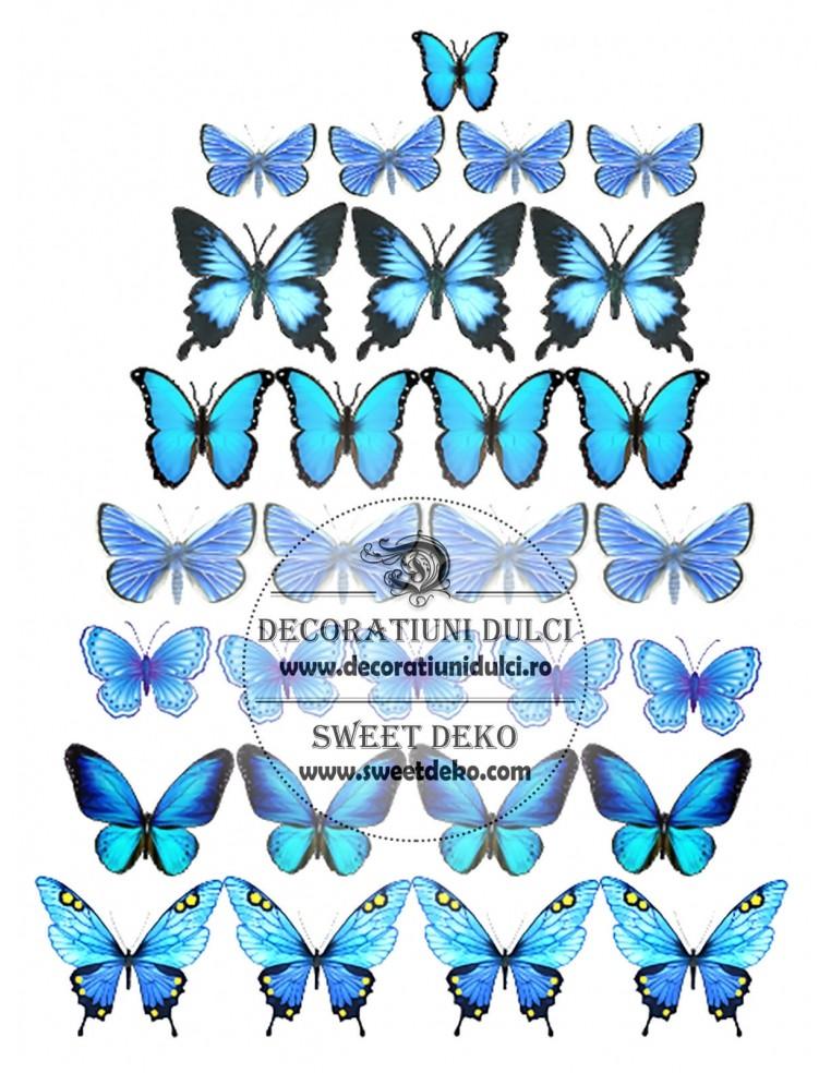 Imagine comestibila Fluturi albastri