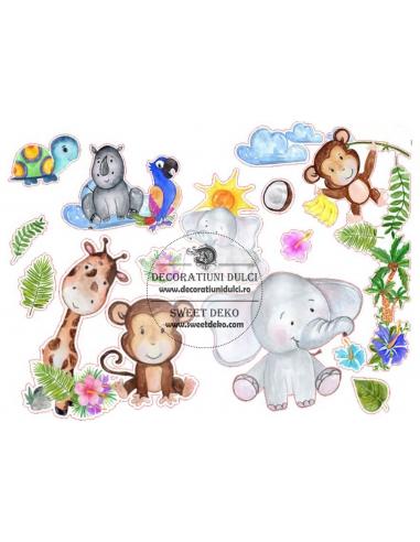 Imagine comestibila Safari Paint